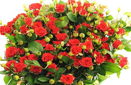 Подарок недели для беременной: букет кустовых роз