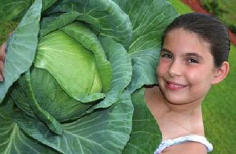 Двенадцатилетний ребенок знает, как накормить всю планету