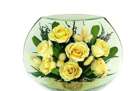 Подарок недели для беременной: невянущие розы