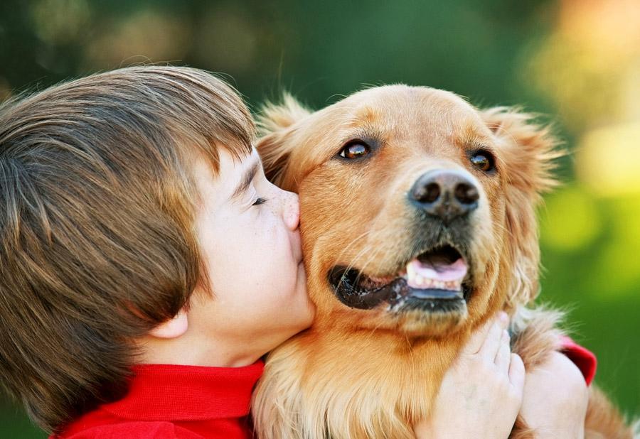 Маленькие дети и собака - сплошной позитив