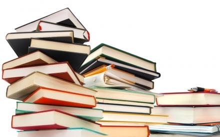 «Золотые» учебники: для украинских школьников закупили книги по 600 гривен