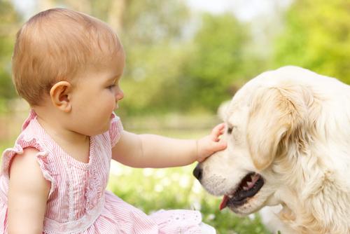 Полугодовалые дети отлично понимают язык собак, - ученые