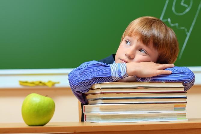 Украинским школьникам будут преподавать право с первого класса