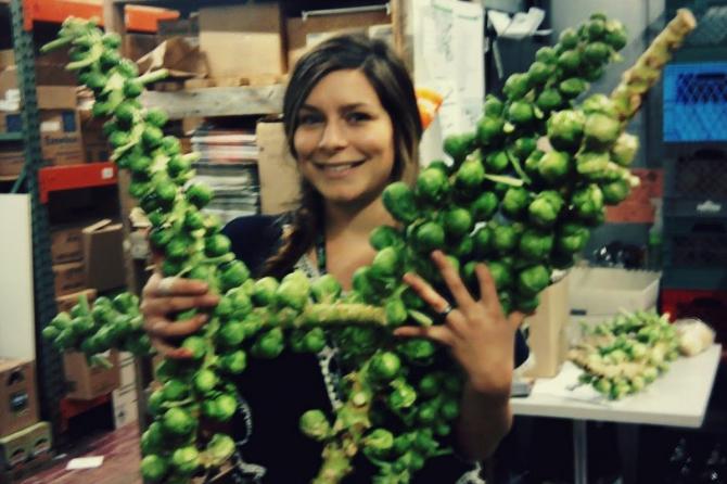 Что нужно есть, чтобы забеременеть: Польза от брюссельской капусты