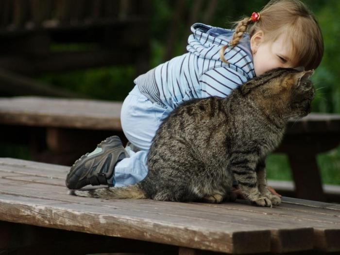 Кашель у ребенка от кота