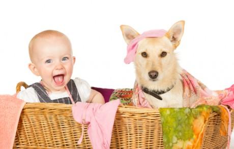 Как домашние животные влияют на развитие детей