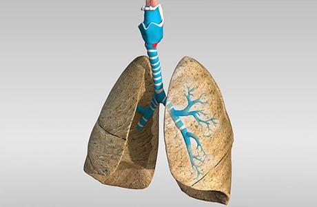 Проблемы с дыхательной системой