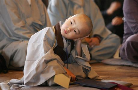 Воспитание и буддизм