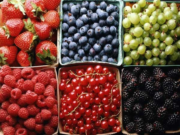 В Татарстане  ягоды продают через интернет