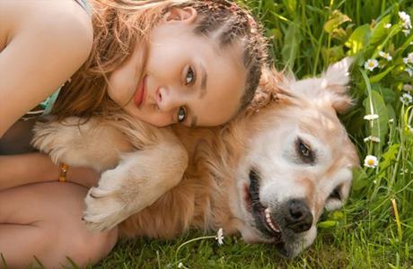 Если у вас будет собака, ее придется регулярно выгуливать