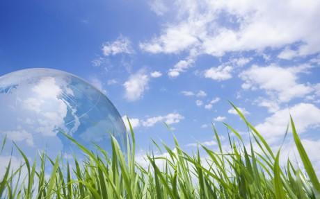 Экологическое образование детей