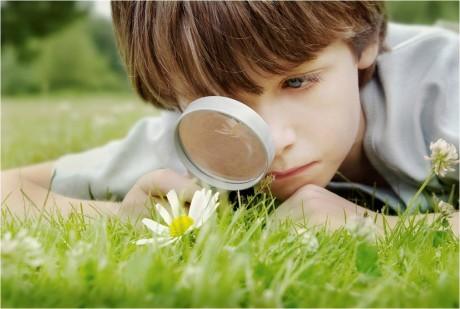 Экологическое воспитание ребенка с ранних лет