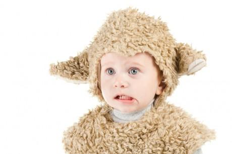 Малыш - Овца