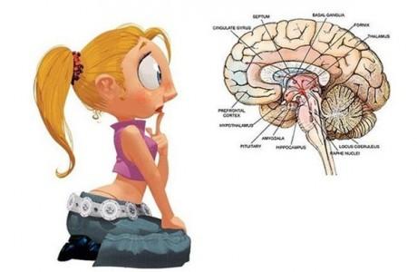 Мозг женщины растет после родов