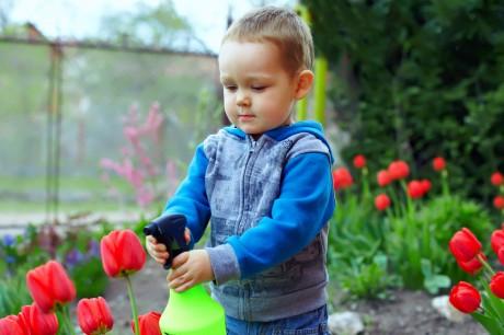 Маленький флорист весной
