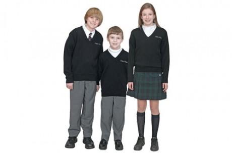 Вводят школьную форму