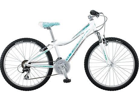 Велосипед Giant Areva 1