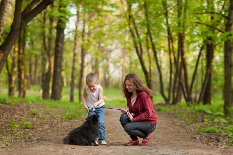 Гуляй с собакой