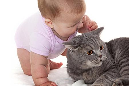 Домашние животные делают детей умными
