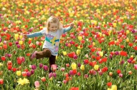 Счастье для детей