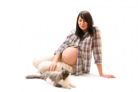Беременная женщина и домашние животные